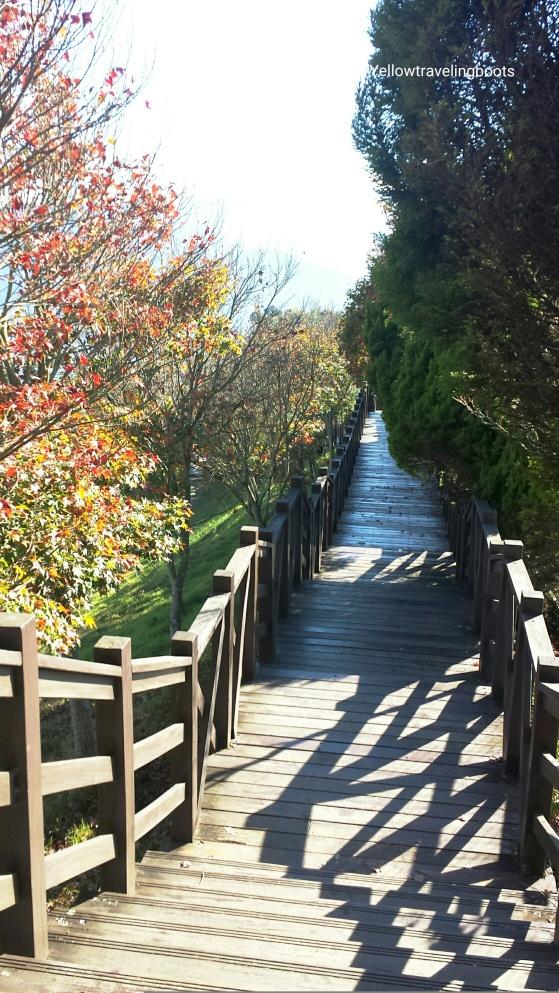 499-steps Walking Trail 步步高升_Cingjing Farm