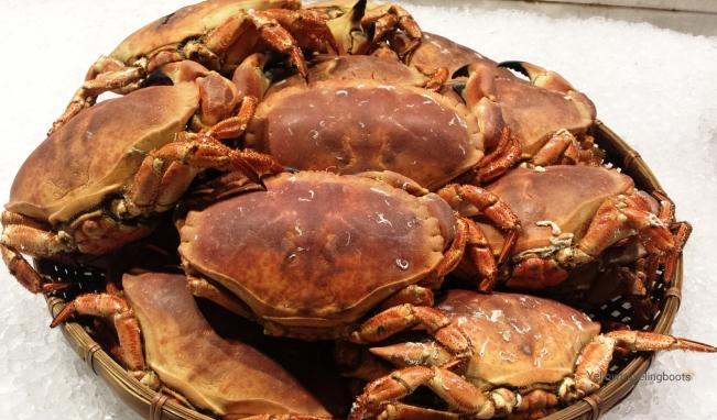 Crabs_2