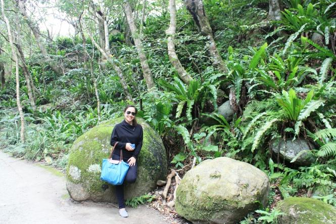 Shakadang Trail stone